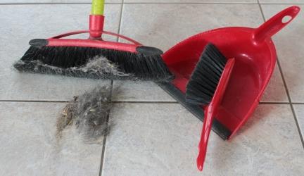 Staub wischen: So putzen Sie gut und vermeiden neuen Staub